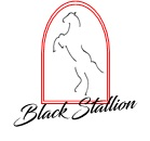 Black Stallion Traditional bows